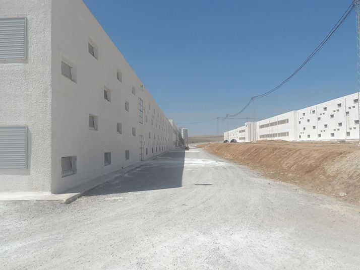 Centre avicole Terra de Carthage, fondé par Abdelwaheb Ben Ayed et son groupe Poulina. © Jamel Bachtobji
