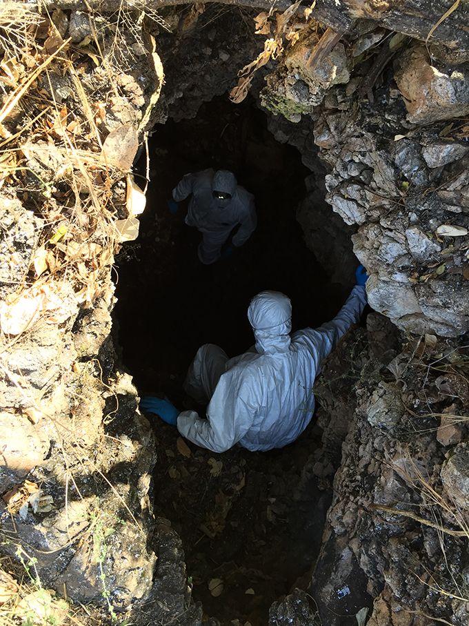 Les chercheurs ont identifié différents types de coronavirus dans des colonies de chauves-souris insectivores et cavernicoles dans les districts Kwekwe et Hurungwe. Ici, l'entrée de la grotte Magweto, à Mashonaland, au Zimbabwe. Photo M. Bourgarel (Cirad)
