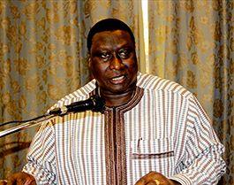 Wilfried Yaméogo, directeur général de la Sofitex. Photo : Tiego Tiemtoré